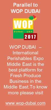 WOP DUBAI 2017
